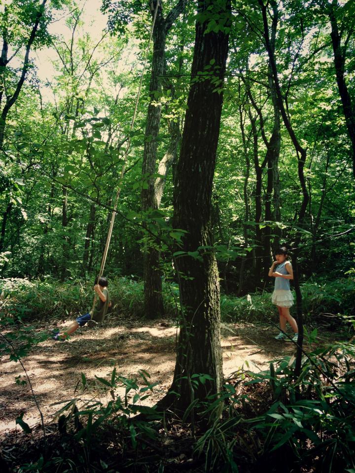 林と子ども.jpg